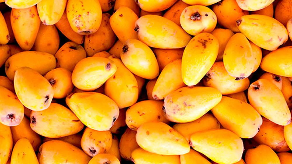 Сезонные фрукты на кипре в декабре