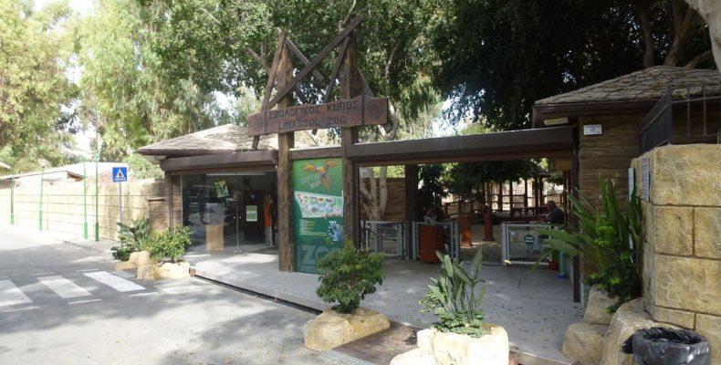 Фотогалерея «Зоопарк в Лимассоле»