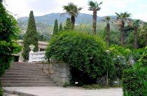 Никитский ботанический сад в Крыму.